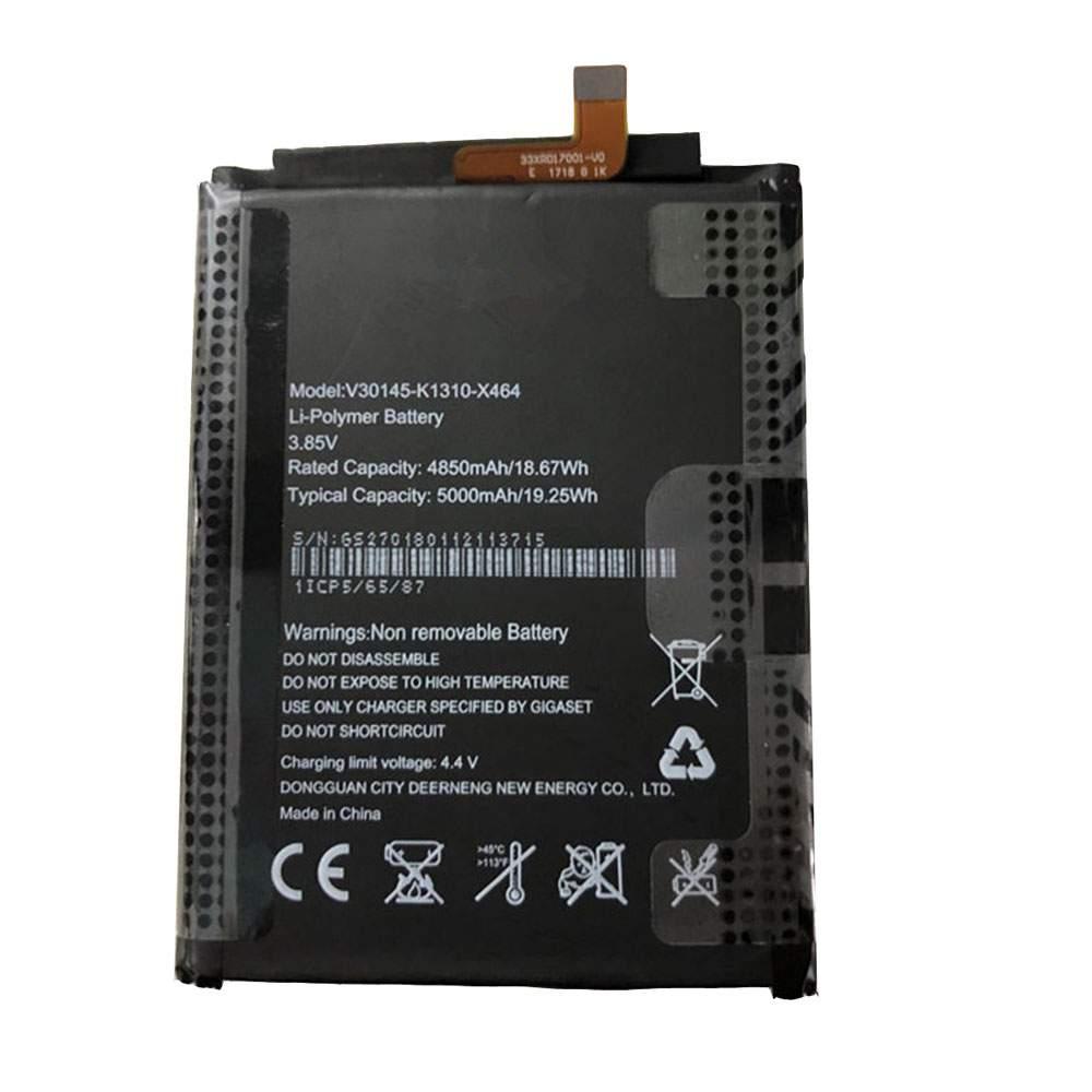 V30145-K1310-X464 for Gigaset G1 Phone